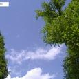 Nanakita_park